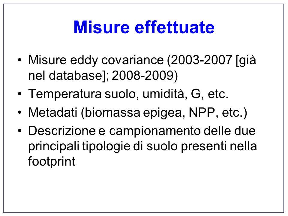 Misure effettuate Misure eddy covariance (2003-2007 [già nel database]; 2008-2009) Temperatura suolo, umidità, G, etc.